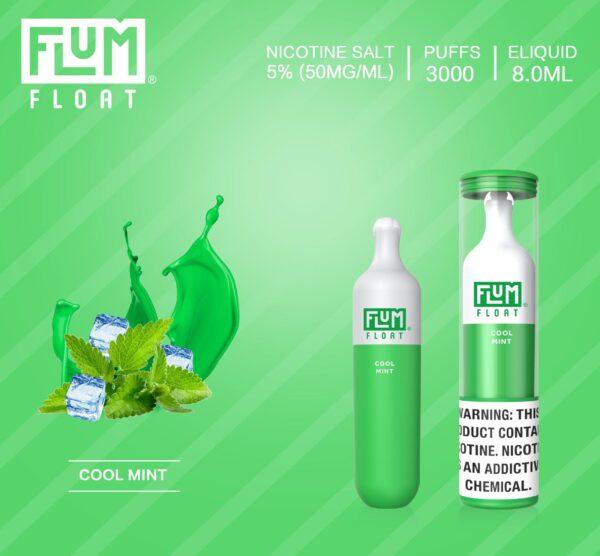 Flum Float Cool Mint