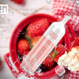 Flum Strawberry Ice Cream